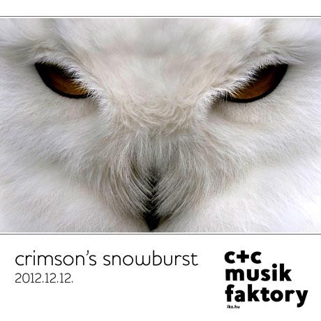 Crimson's Snowburst 121212